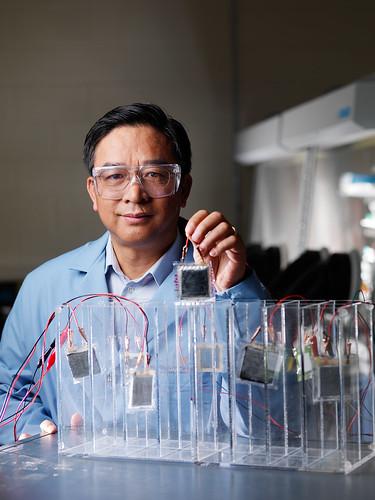 Battery researcher Jason Zhang