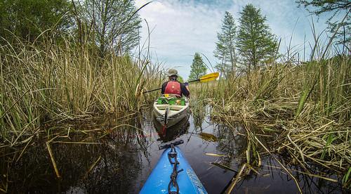 Lake Marion Plantation Islands-041
