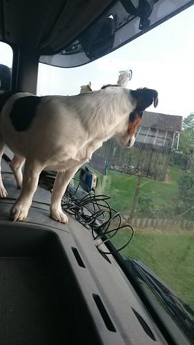 june en camion