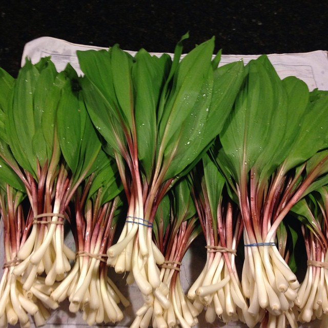 #ramps washed and ready to use.
