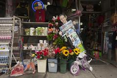 99� Store Tableau, Bay Ridge, Brooklyn