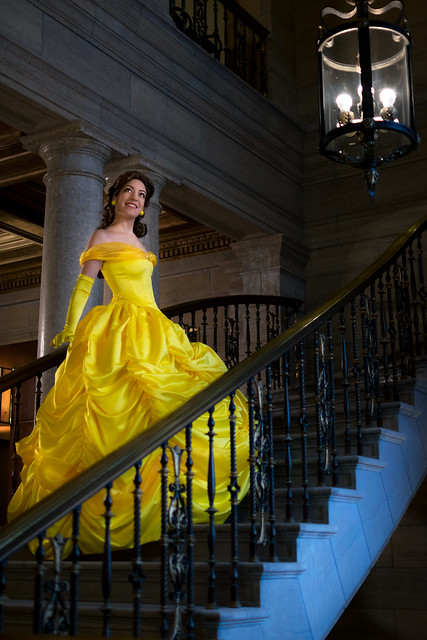 Belle at the Library-1