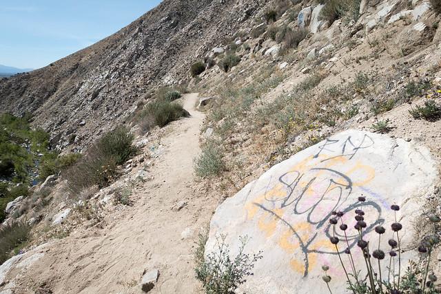 Grafitti, m311