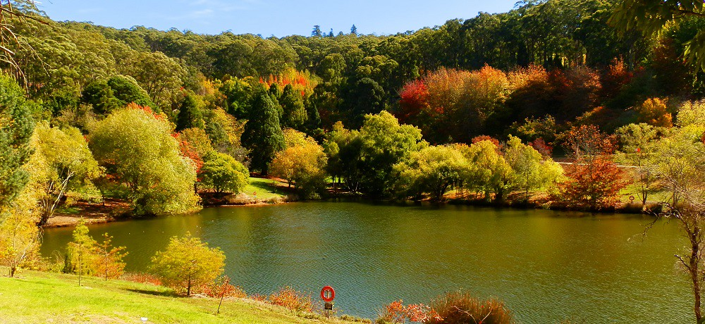 Adelaide Autumn and the Mount Lofty Botanic Gardens RedzAustralia