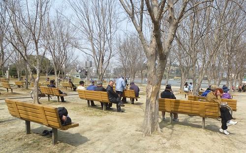 Co-Jeonju-Parc Deokjin (3)