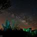 Sonoran Desert Milky Way.