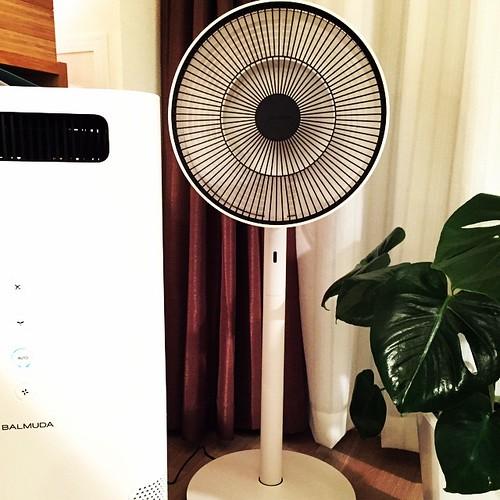 バルミューダの扇風機。これで暑いマンションの部屋も少しは涼しくなる!#balmuda #greenfanjapan #airengine