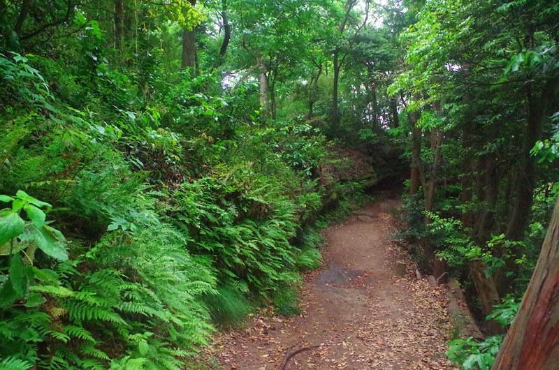 toomilog-tengoku_Hiking_trail014