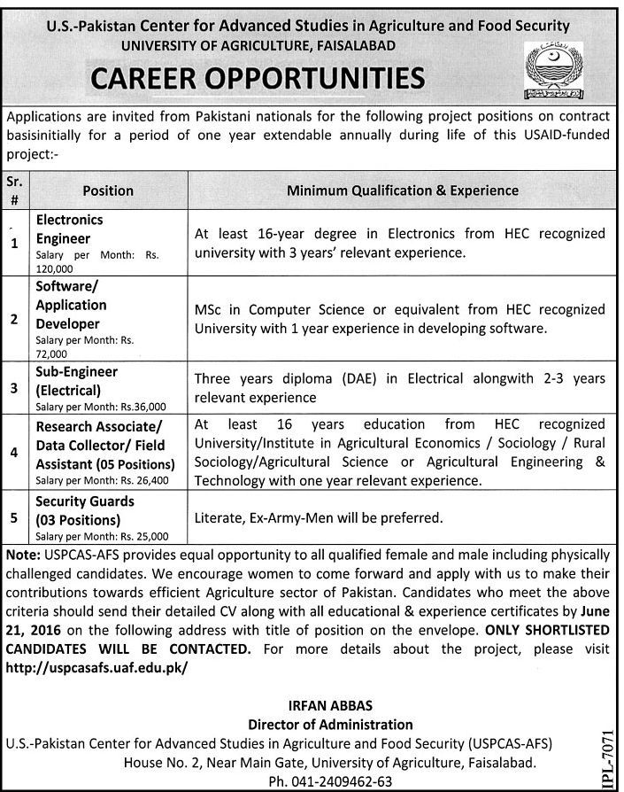 University of Agriculture Faislabad Jobs