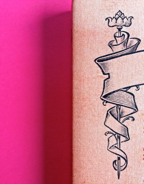 La stella del vespro, di Colette. Del Vecchio Editore 2015. Art direction, cover, illustrazioni, logo design: IFIX | Maurizio Ceccato. Copertina (part.), 5