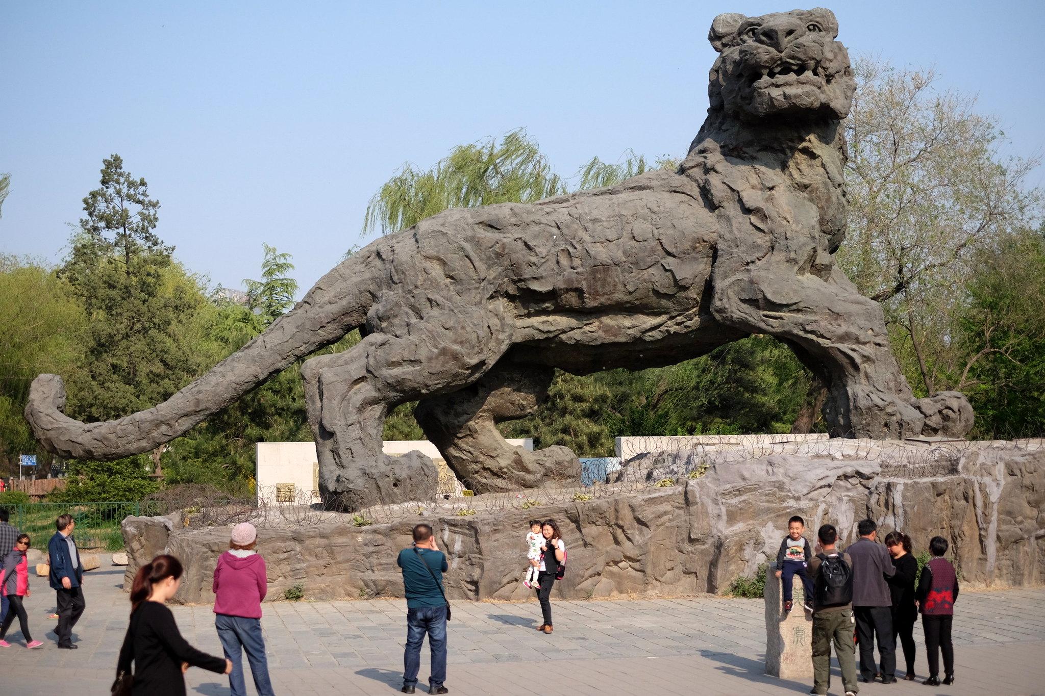 Zoo Beijing