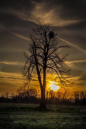voyage sunset sun beautiful landscape spring nest outdoor exploring tre bosniaandherzegovina republikasrpska pelagićevo