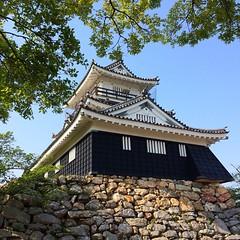 浜松城天守閣🏯   #浜松城 #浜松 #天守閣 #出世城 #hamamatsucastle #hamamatsu #castle #japan