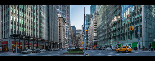 "Park Avenue, New York dal libro ""Il cardellino 