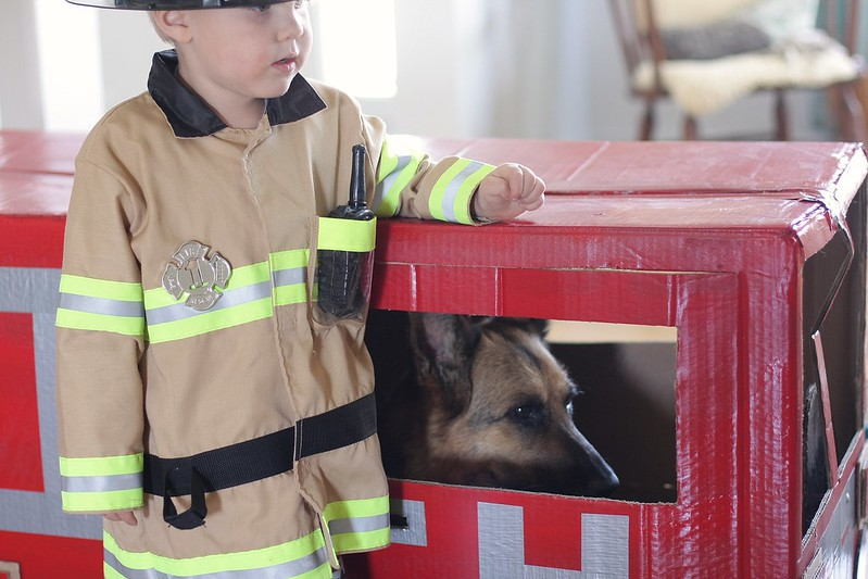 fire fighting dog