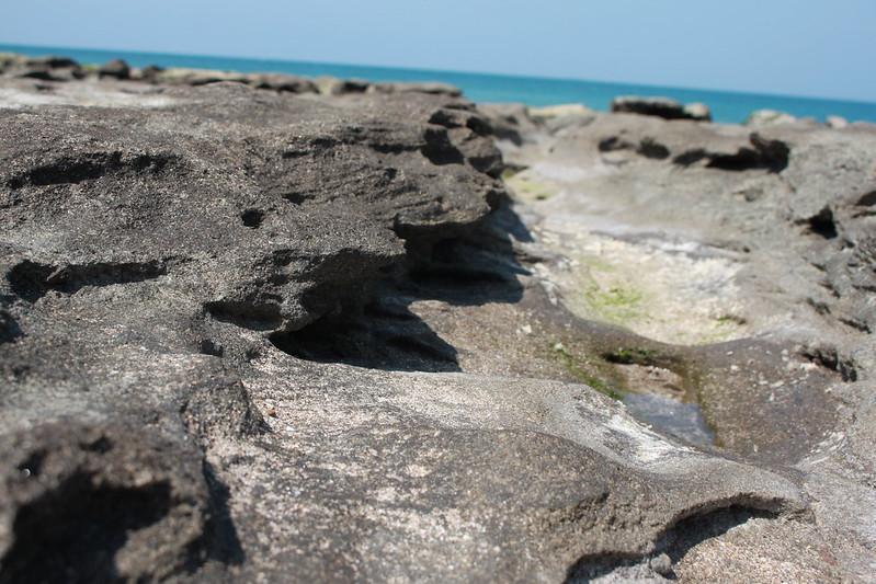 17度C台二線景點-石門-老梅綠石槽 (50)