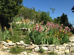 Un jardin au détour du sentier