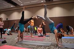 Northwest Yoga Conference 2015