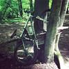 Bike-Baum im Rothbachtal in Hünxe
