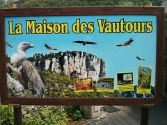 The Vulture Centre