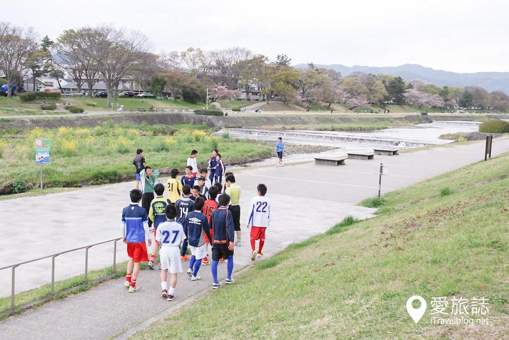京都赏樱景点 半木之道 02