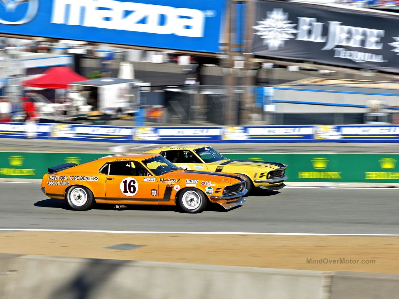 Ford Mustang Boss 302 Tans Am Race Car