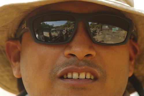 Safari View Through Guide's Sunglasses - Bandhavgargh, India K__33859
