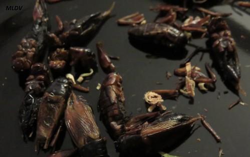 grillons à la thai comestibles