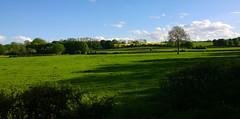 Autreppes Landscape