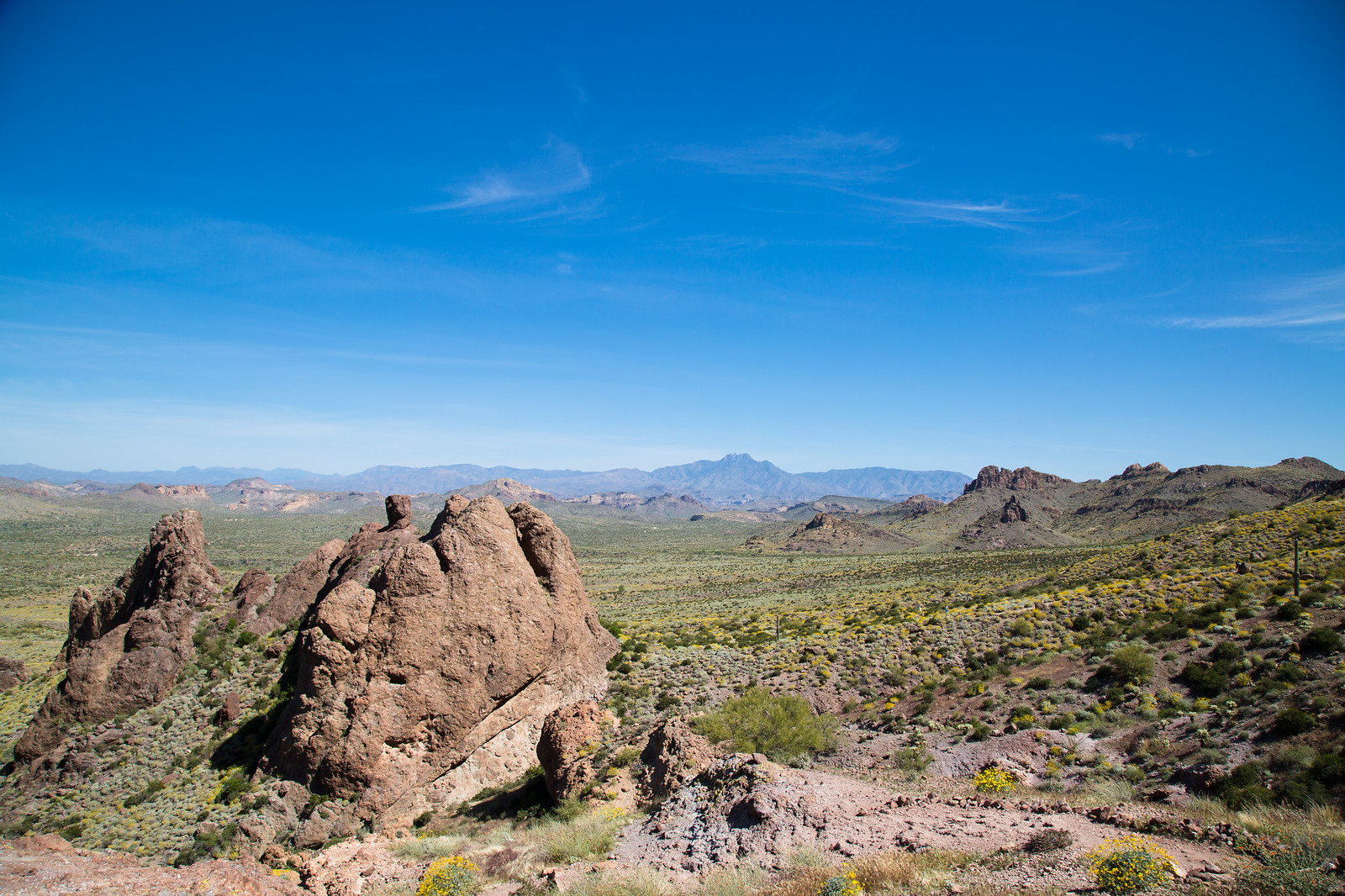 2015-03-12 Arizona-6448.jpg
