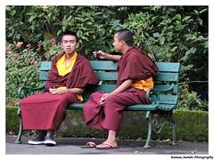 Sikkim Darjeeling Tour 2014 - Monks