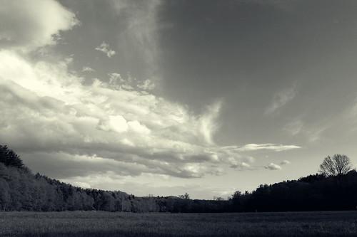 clouds biltmoreestate ashevillenc ashevillenorthcarolina monochromelandscape landscapewithclouds katharinehanna monochromeclouds