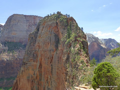 Final stretch to Angel's Landing