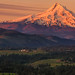 Alpenglow on Mount Hood by brianstowell