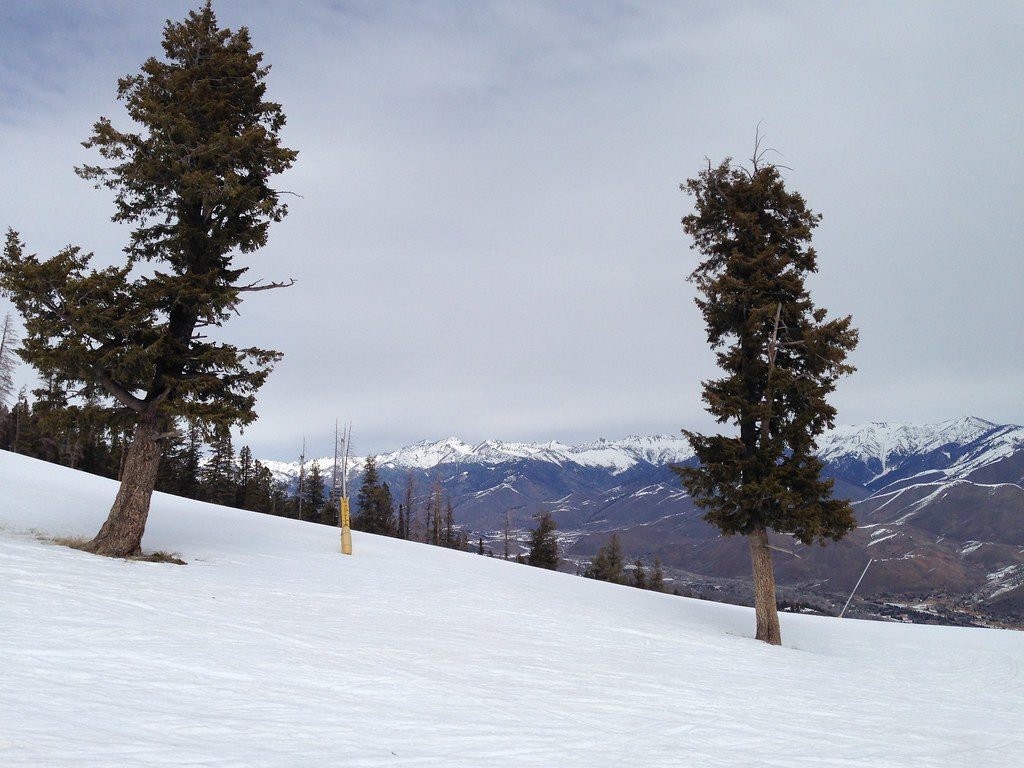 Snowboarding at Roundhouse Slope