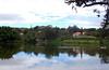 Lago Javary - Miguel Pereira