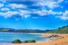 Slapton sands ,naturist beach