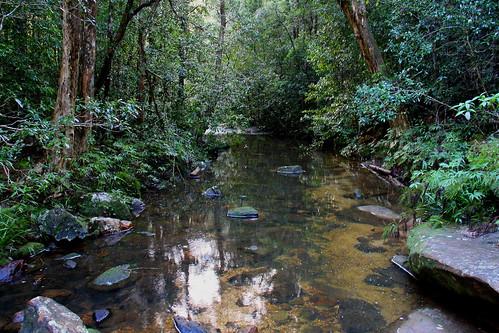 Stewart River Mid North Coast NSW