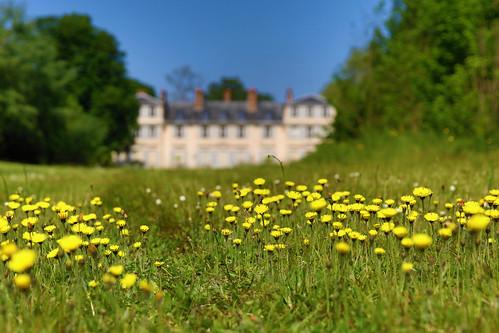 Parc du Domaine de Mme Elisabeth