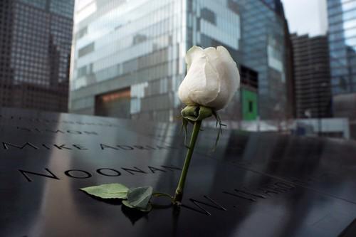 Memoriale 9/11: una rosa per le vittime