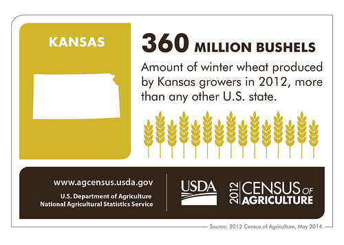 Agriculture is blooming in the Sunflower State! Be sure to check back next week for more highlights from another state and the 2012 Census of Agriculture.