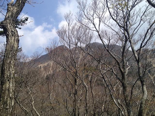 釈迦ヶ岳 中尾根登山道 釈迦ヶ岳