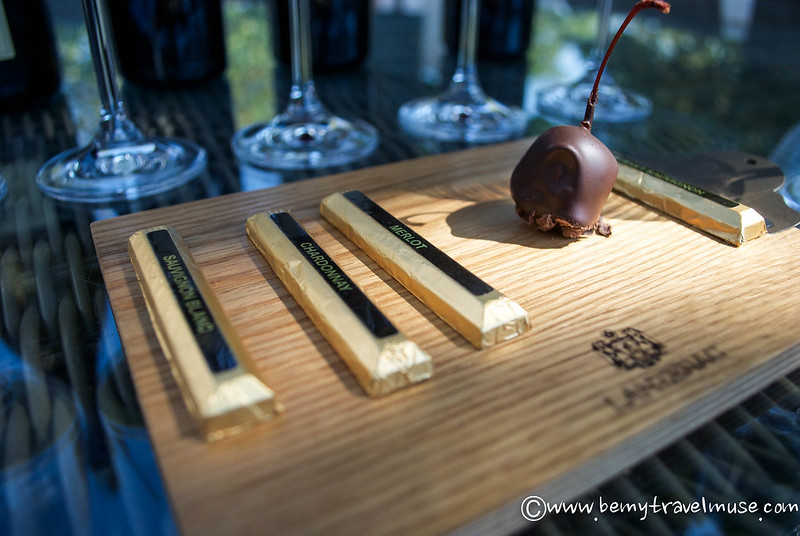 wine tasting in stellenbosch south africa