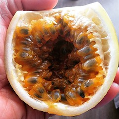 DR Travelouge - Punta Cana - Chinola - Passion Fruit