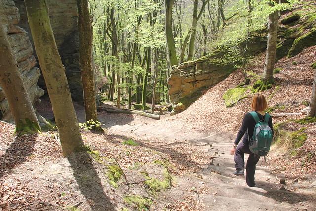 Mullerthal Trail 2: vaellus Berdorf - Consdorf