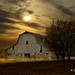 Spring Barn # 36 by Mike Linnihan