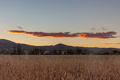 Sunset over Tumut Plains