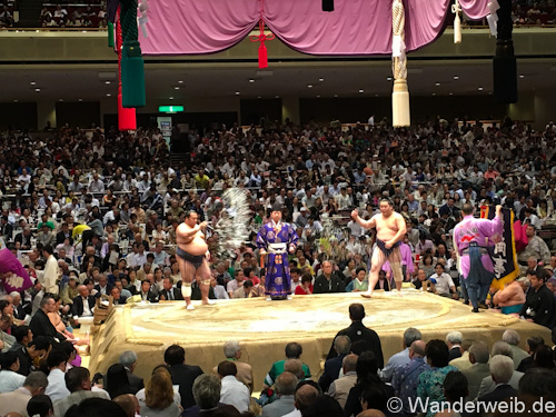 sumo (52 von 53)