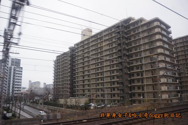 日本JR地鐵電車便當09