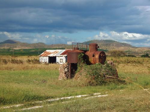 puerto farm rico agriculture diaz juana
